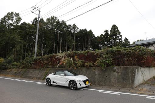 IMG_4469-3.jpg